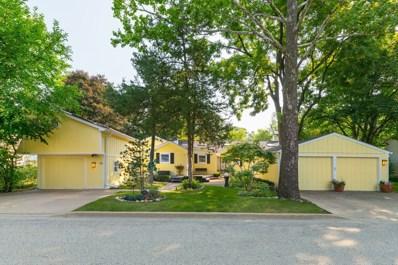 1313 Fox River Drive, Algonquin, IL 60102 - #: 10042380