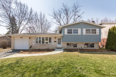 407 W BRAESIDE Drive, Arlington Heights, IL 60004 - MLS#: 10042383
