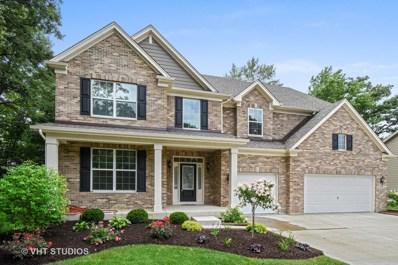 1676 Hickory Drive, Hoffman Estates, IL 60192 - #: 10043695