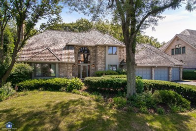 14713 Crystal Tree Drive, Orland Park, IL 60462 - #: 10043700