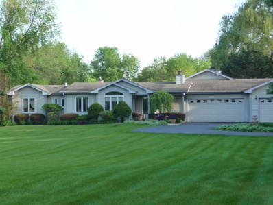 215 Midway Drive, Willowbrook, IL 60527 - #: 10043876