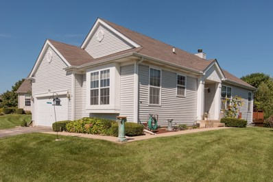 63 Netherlands Drive, Antioch, IL 60002 - MLS#: 10044324