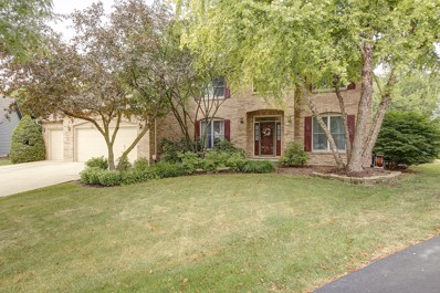 1003 Hollingswood Court, Naperville, IL 60564 - MLS#: 10045022