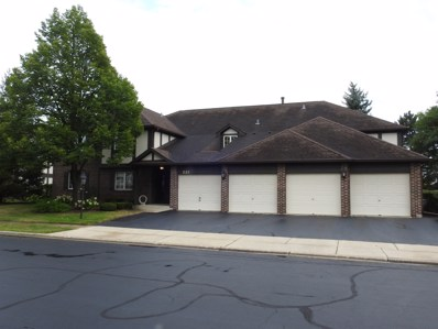 221 Stanhope Drive UNIT C, Willowbrook, IL 60527 - MLS#: 10045075