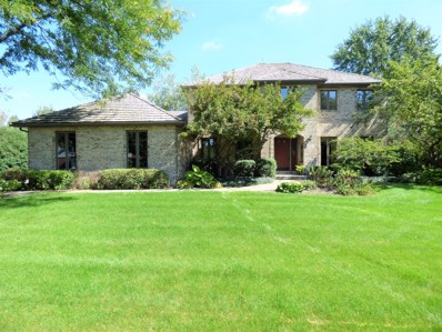219 Darien Lane, Sleepy Hollow, IL 60118 - #: 10045106