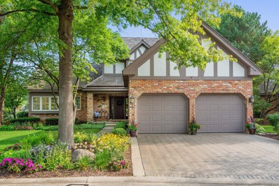 13 Lake Ridge Club Court, Burr Ridge, IL 60527 - #: 10045181