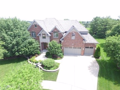 1580 Whistler Court, Naperville, IL 60564 - #: 10045183