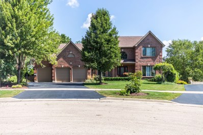 6 Nadelhoffer Court, Woodridge, IL 60517 - #: 10045401
