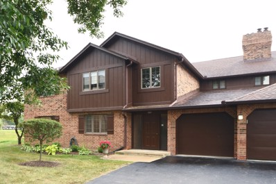 13217 N Country Club Court UNIT 1AA, Palos Heights, IL 60463 - #: 10045754