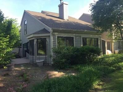 333 N Bay Court, Lake Barrington, IL 60010 - #: 10046220