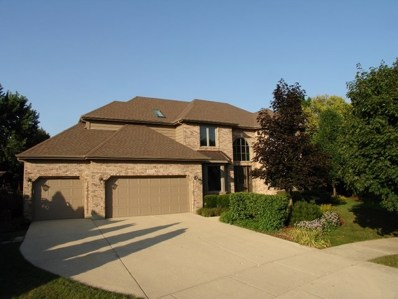 1051 STOCKTON Court, Aurora, IL 60502 - #: 10046266