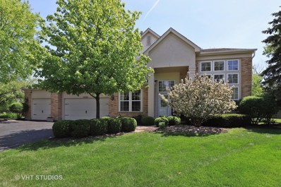 14460 Post Oak Court, Green Oaks, IL 60048 - #: 10046535