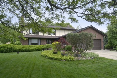 305 N Gail Court, Prospect Heights, IL 60070 - #: 10046729