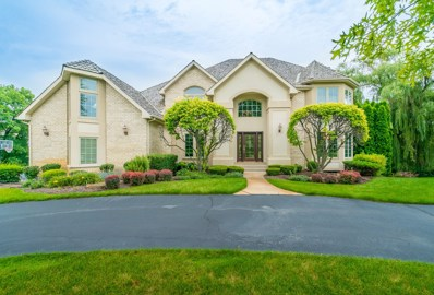 12713 S Misty Harbour Lane, Palos Park, IL 60464 - #: 10046892