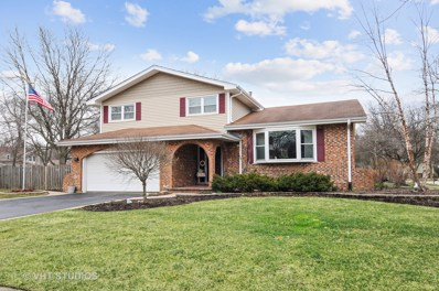 1036 Williamsburg Drive, Naperville, IL 60540 - #: 10047126