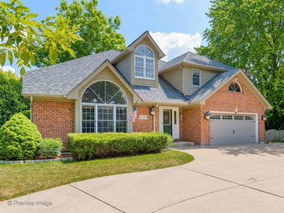 5937 Boundary Road, Downers Grove, IL 60516 - #: 10047470