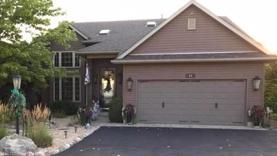 23 Hole In The Wall Court, Wilmington, IL 60481 - #: 10047552