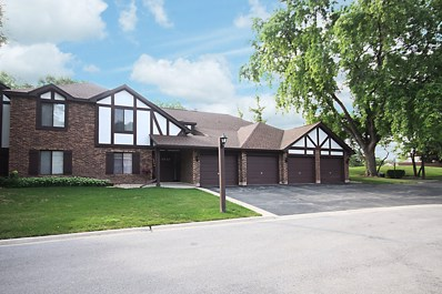 1737 Harrow Court UNIT B, Wheaton, IL 60189 - #: 10048088