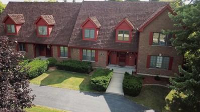 105 Stone Marsh Lane, Barrington, IL 60010 - #: 10048234