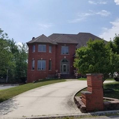 8841 W 100th Place, Palos Hills, IL 60465 - MLS#: 10048617