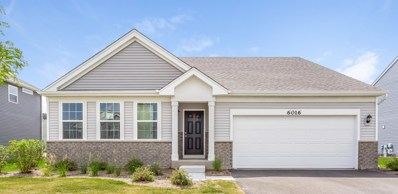 6016 Autumn Oaks Drive, Joliet, IL 60431 - MLS#: 10048632
