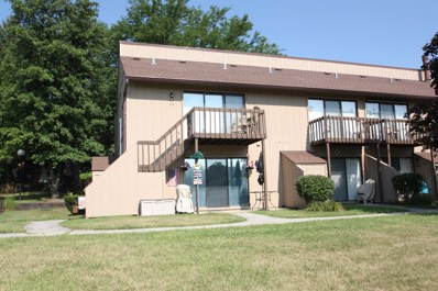 62 Aspen Colony UNIT 10, Fox Lake, IL 60020 - MLS#: 10048674