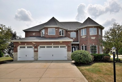 12217 Red Clover Lane, Plainfield, IL 60585 - MLS#: 10048753
