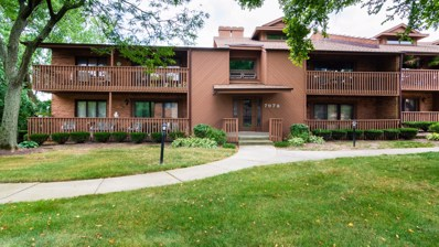 7978 S Garfield Avenue UNIT 206, Burr Ridge, IL 60527 - MLS#: 10048763