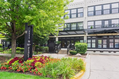 1111 W 14th Place UNIT 213, Chicago, IL 60608 - MLS#: 10050115