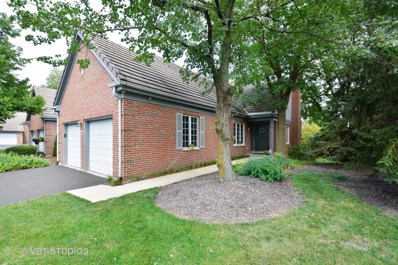 44 Thornhill Court, Burr Ridge, IL 60527 - MLS#: 10050233