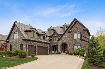 1929 Royal Birkdale Drive, Vernon Hills, IL 60061 - #: 10051269