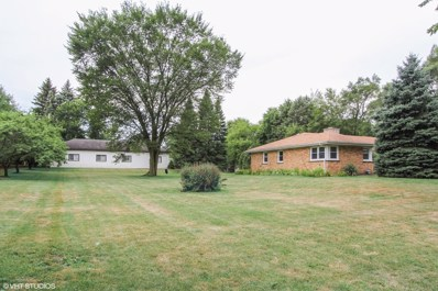 212 Us Highway 45, Indian Creek, IL 60061 - #: 10051818
