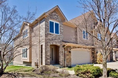 241 Taylor Court, Buffalo Grove, IL 60089 - MLS#: 10051902