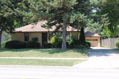 431 Garfield Avenue, Libertyville, IL 60048 - #: 10051955