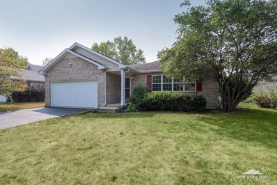 132 Steamboat Lane, Bolingbrook, IL 60490 - #: 10052171
