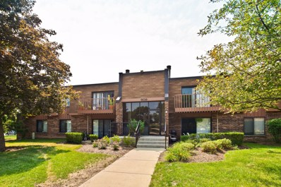 609 Limerick Lane UNIT 1B, Schaumburg, IL 60193 - #: 10052422