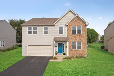 14447 Independence Drive, Plainfield, IL 60544 - #: 10053063