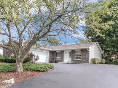 124 Tanager Drive, Bloomingdale, IL 60108 - #: 10053282