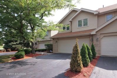 17105 Rochelle Lane, Tinley Park, IL 60487 - #: 10053826
