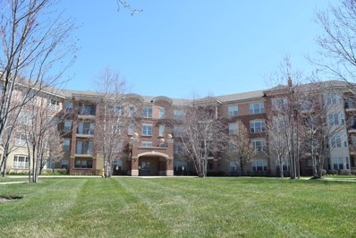 2700 Summit Drive UNIT 209, Glenview, IL 60025 - #: 10053967