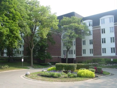 250 Lake Boulevard UNIT 216, Buffalo Grove, IL 60089 - #: 10053972