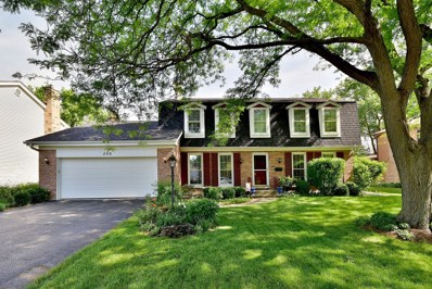 206 White Fawn Trail, Downers Grove, IL 60516 - MLS#: 10053989