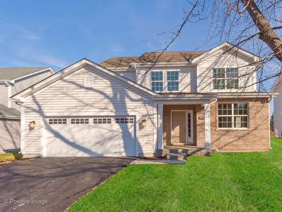 30W266  Batavia Road, Warrenville, IL 60555 - #: 10054373
