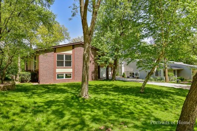 1960 Green Trails Drive, Lisle, IL 60532 - #: 10054806