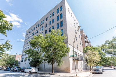 811 S Lytle Street UNIT 110, Chicago, IL 60607 - #: 10055001