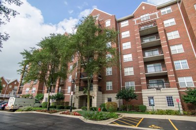 470 W Mahogany Court UNIT 306, Palatine, IL 60067 - MLS#: 10055283
