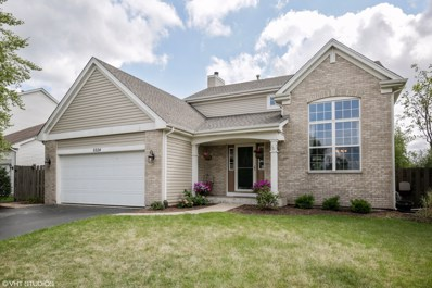 5524 McKenzie Drive, Lake In The Hills, IL 60156 - MLS#: 10056052