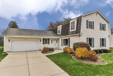 747 S Middleton Avenue, Palatine, IL 60067 - MLS#: 10056128
