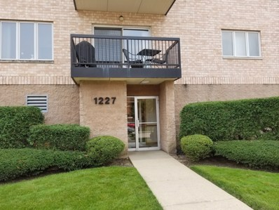 1227 Brown Street UNIT 401, Des Plaines, IL 60016 - #: 10056344