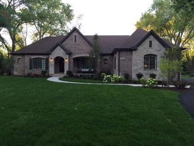 1741 Lake Charles Drive, Vernon Hills, IL 60061 - #: 10056658